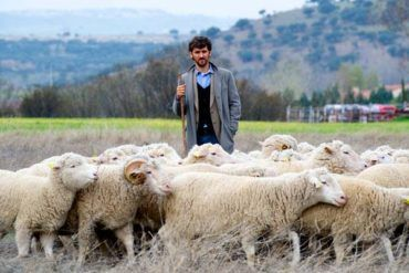 """Raúl Arévalo en la película """"Las ovejas no pierden el tren"""" (2015)"""