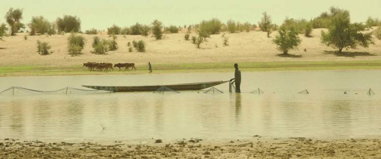 Timbuktu - Foto de la película
