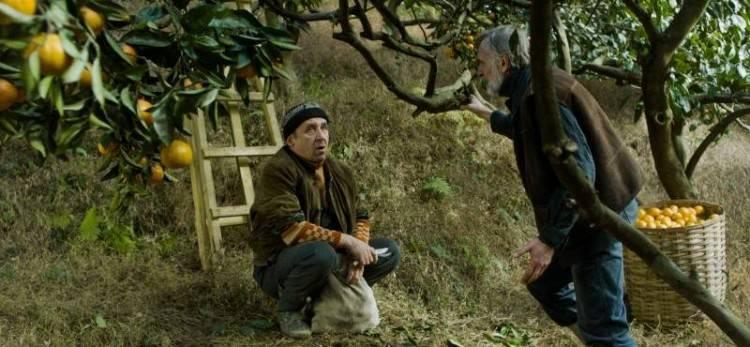 Imagen de la película Mandarinas