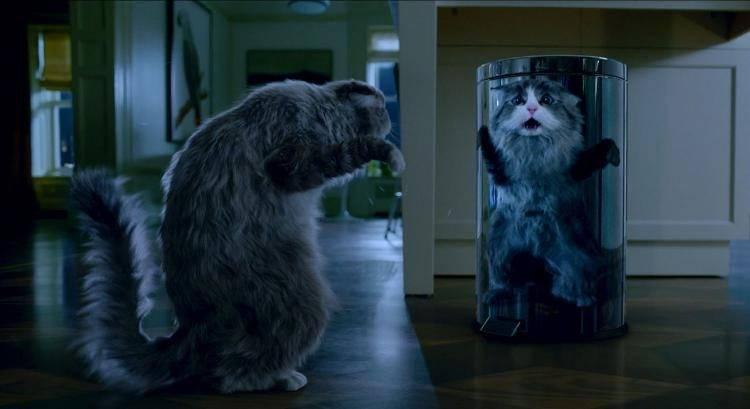 Kevin Spacey presta su voz al gato en la película