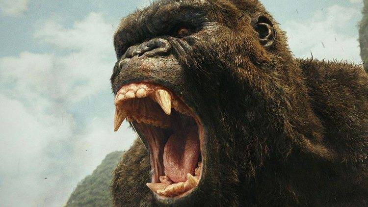 King Kong bastante cabreado