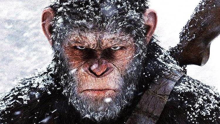 Los simios están más que cabreados en La guerra del Planeta de los Simios