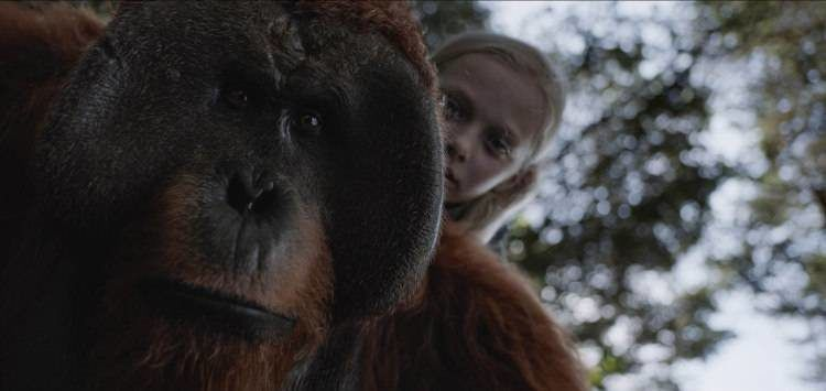Amiah Miller será la alidada humana de los simios