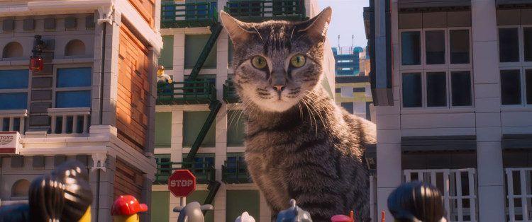 Un gato amenaza la ciudad de Ninjago