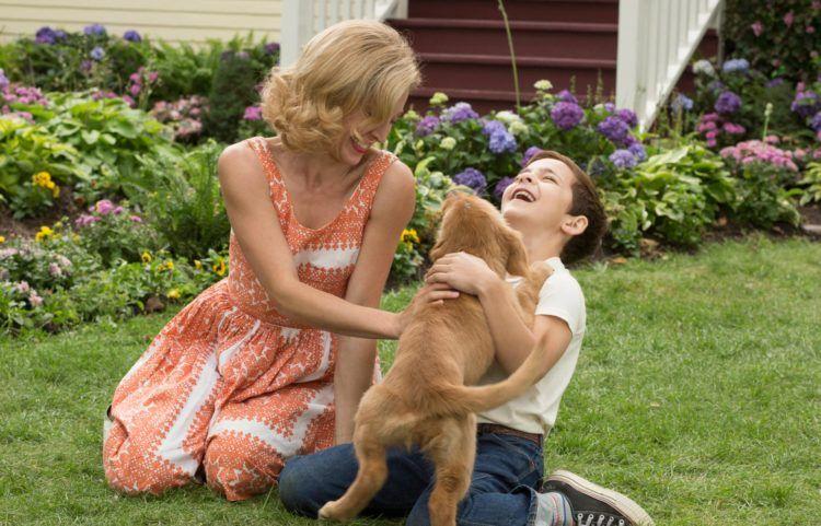 """Imagen de la película """"Tu mejor amigo"""""""
