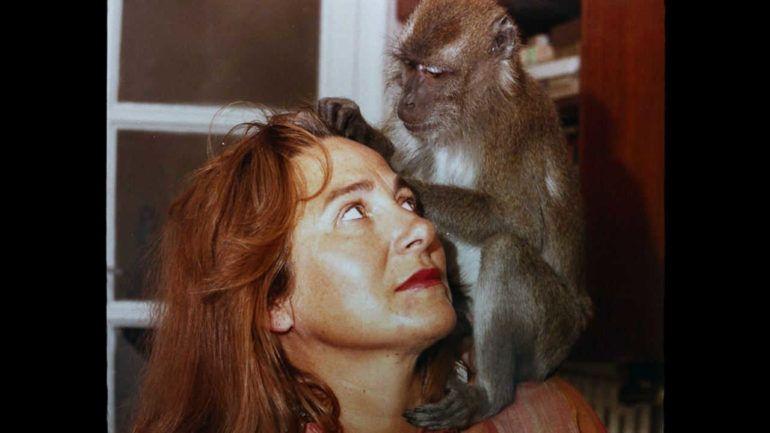 """""""Muchos hijos, un mono y un castillo"""" es una documental dirigido por Gustavo Salmerón"""