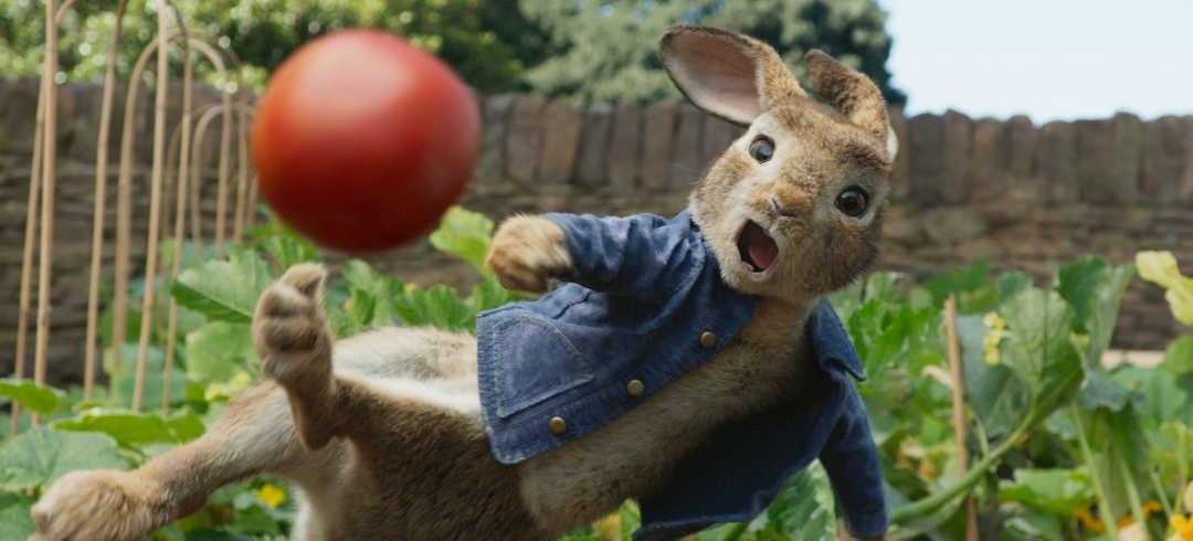 Peter Rabbit, el protagonista de la película al que dobla Dani Rovira