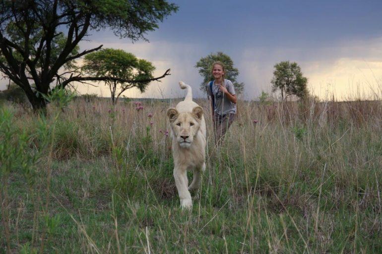 Imagen de la película Mia y el León Blanco