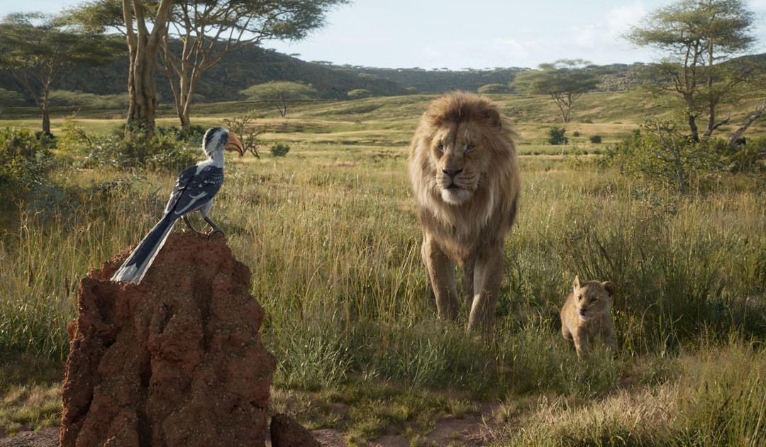 Los personajes Zazú, Mufasa y Simba (Opinión El rey León 2019)