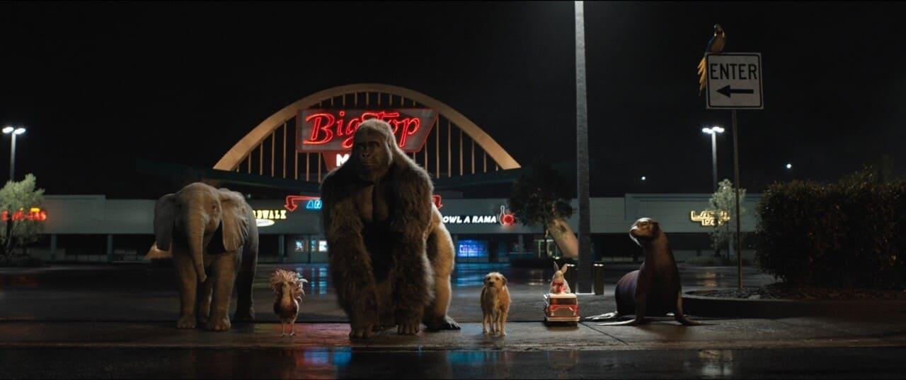 Escena de la película El magnífico Iván de Disney +